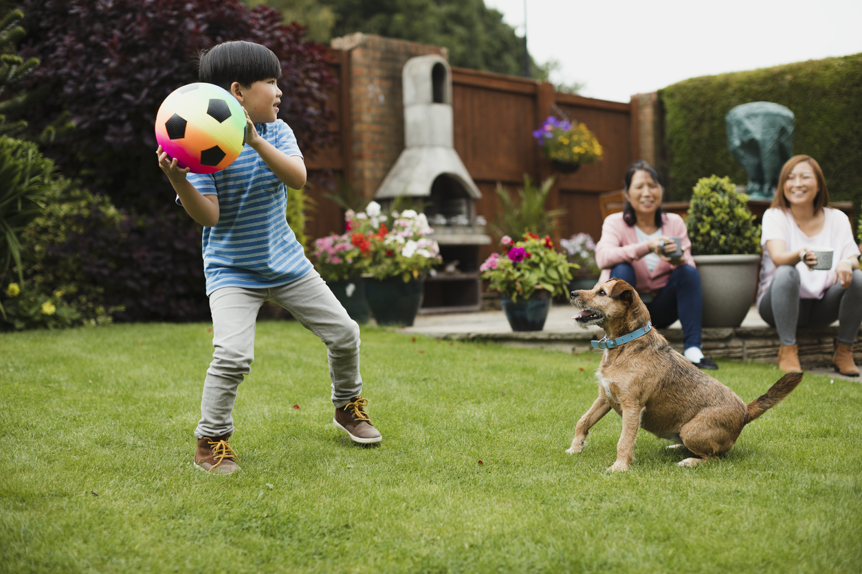 A little boy playing with a dog and holding up a colorful soccer ball as two ladies happily watch.